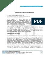 Informe de Auditoria 2013