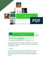 Planesi-silice (2).pdf