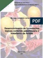 2007 Dissertacao Helaine Carneiro Capucho