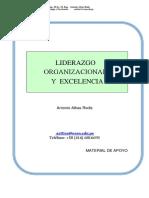 Manual Liderazgo Organizacion y Competencias