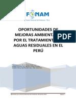 Oportunidades Mejoras Ambientales Peru