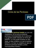 Ciclo de Las Pentosas