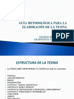 Guia Para Tesina Cmg (1)