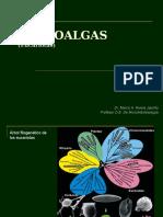 Clase 7 - Microalgas