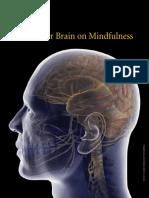 Brain Imaging - Meditation Research