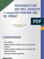 1. Perfil Epidemiológico de La Salud Del Adulto y Adulto Mayor