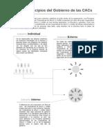 Governance Principles Overview Spanish
