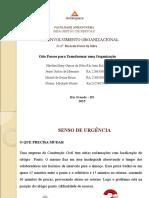 PPt. desenvolvimento organizacional