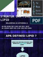 Ppt Biokimia - Lipid