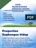 IPS 2