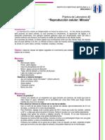 Práctica de Laboratorio2 BiologiaII