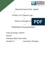Rehabilitacion Neuropsicologica