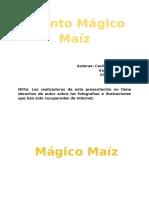 Mágico Maíz