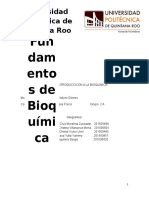 Bioquímica Parcial 1 (Autoguardado)