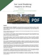 Biochar Land Grabbing - The Impacts on Africa