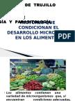 Clase 2 - Factores y Accion Microbiologica