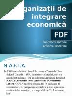 Organizații de Integrare Economică