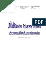 peic-mesa-alta-2008-2009.pdf