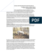 ETOLOGIA ASPECTOS GENERALES.doc