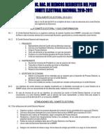 Reglamento Electoral Anmrp 2010[1]