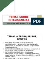 Temas Sobre Inteligencia