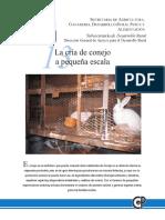 La cria de Conejo.pdf