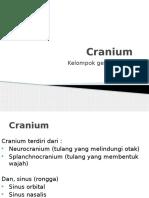 Cranium.pptx