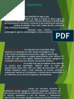 componentes-farmacotecniaII
