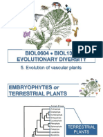 Introduction to Vascular Plants