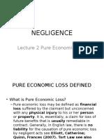 Lecture 2 Pure Economic Loss