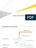 Risk.audit Formula