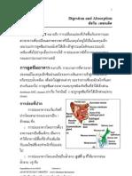 Digestion and Absorption (ชัชวิน)