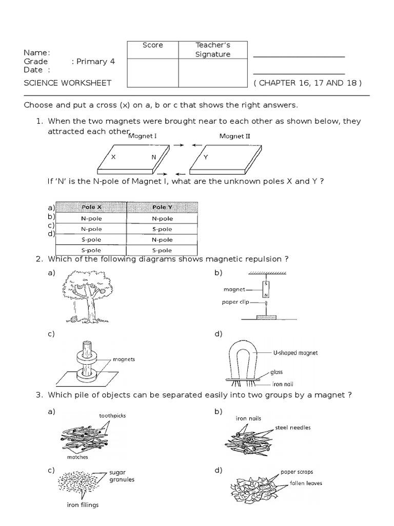 worksheet magnet worksheet grass fedjp worksheet study site. Black Bedroom Furniture Sets. Home Design Ideas