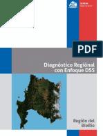 Diagnostico Regional 2013