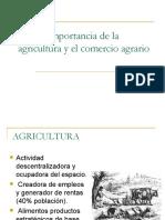 1.1 Importancia de La Agricultura