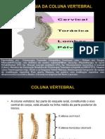 Aula 3-OSTEOLOGIA DA COLUNA VERTEBRAL.pdf