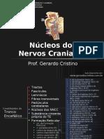 NÚCLEOS DOS NERVOS CRANIANOS.pdf