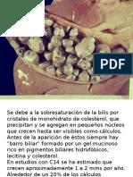 Patologias del Elemento Madera Hígado y Vesícula Biliar.pptx