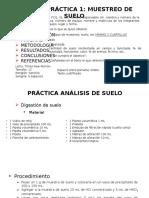 Practica Muestreo y Analisis de Muestra (1)