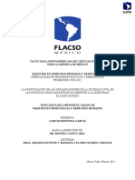 Hinojosa_C.pdf