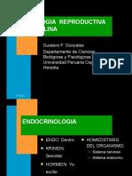 Fisiologia Humana- Fisología Reproductiva I