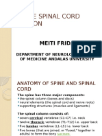 Acute Spinal Cord Lession