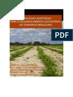 Tecnologias Adaptadas Para o Desenvolvimento Sustentavel Do Semiárido Brasileiro v2