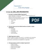 sjellje organizative