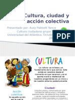 Cultura, Cuidad y Accion Colectiva