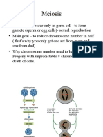 BIOL 3301 - Genetics Ch3B - Meiosis St