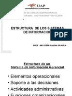 Estructura de los SIGS.ppt