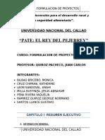 Pate Rey Pejerrey-Formulacion de Proyectos-Version Final