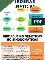 Sorderas genéticas y Trauma Acustico