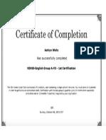 stroke scale certification 15